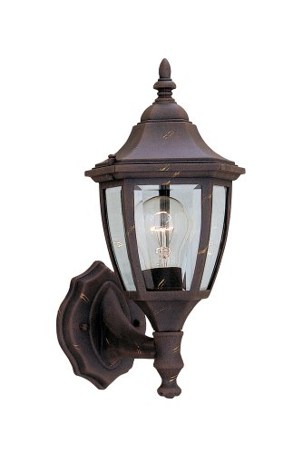 Designers Fountain 2462-AG Builder Cast Aluminum Collection 1-Light Exterior Wall Lantern, Autumn Gold Finish with Clear Beveled Glass