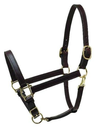 Black Leather Horse Halter - Perri's Horse Deluxe Turnout Halter, Black