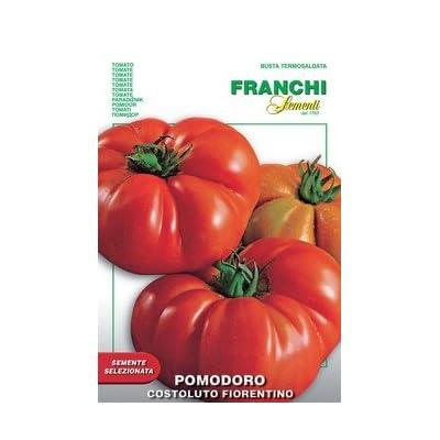 Italian Heirloom Tomato - Costoluto Fiorentino: Everything Else