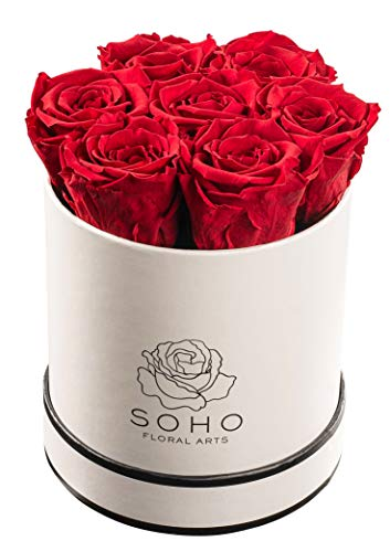 Soho Floral Arts | Real Roses That Last a Year and More | Fresh Flowers | Eternal Roses in a Box (Red: 7 X-Large Roses) | Mothers Day Gifts | Gifts for Mom