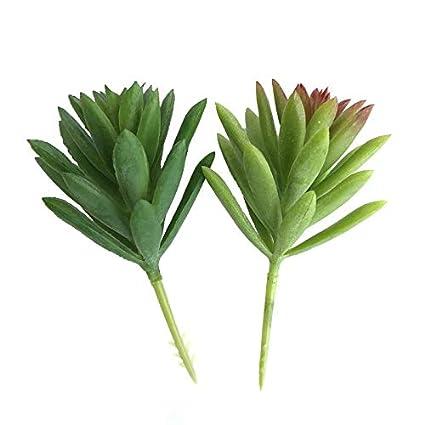 LINSUNG Succulente Fleur Plante Vert 2pcs