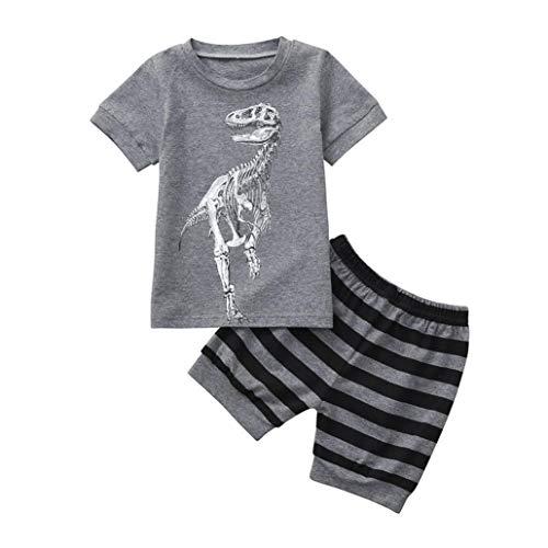 Hot Sale! Toddler Kids Baby Boys Dinosaur Pajamas Cartoon Print T Shirt Tops Shorts Outfits Set (Gray E, 6T) ()