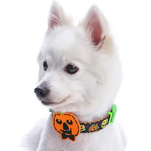 Blueberry Pet 8 Patterns Halloween Harvest Pumpkin Classic Designer Dog Collar with Decoration, Medium, Neck 14.5