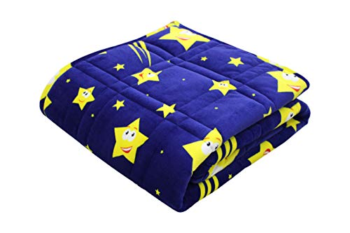 Pine and River P&R Ultra Plush Weighted Blanket -Great for Winter | Minky Warm Luxury - (48