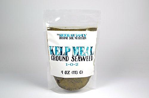 4 Ounces Organic Maxicrop Kelp Meal 1-0-2 Natural Norwegian Kelp Seaweed Fertilizer