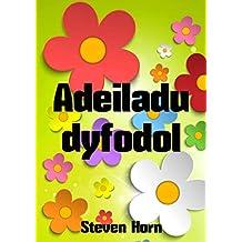 Adeiladu dyfodol (Welsh Edition)