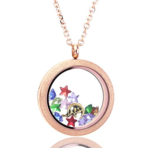Zysta Rose Gold Round Locket Pendant Necklace 25mm Matte Stainless Steel Clear Glass Living Memory Floating Charms Stone Storage