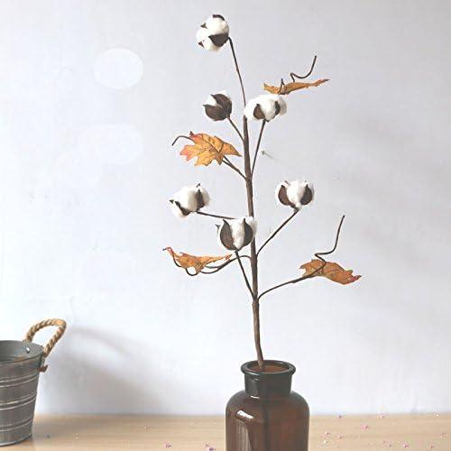 FANG-SDUDIO algodón Seca Flores Algodón Bundle: Amazon.es ...