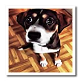 Marty The Soulful Eyed Dog Iron on Heat Transfer is a great way to jazz up a plain T-shirt, pillow case or any other light color fabric. The transfer is transparent and should be applied only to white or light colored material suitable to wit...