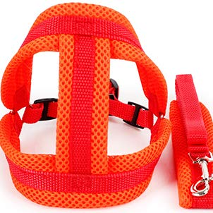 orange W2.0cm orange W2.0cm Vest-Type Pet Dog Leash,Small and Medium Dog Leash,Reflective Pull Rope,Nylon Mesh, Solid and Durable. (color   orange, Size   W2.0cm)