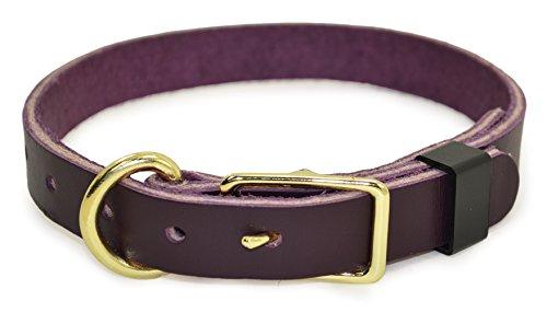 J&J Dog Supplies JJ320-TEA Leather Dog Collar, Teal