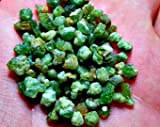 1 Gram Demantoid Garnet Crystals Ideal for Wire Wrapping, Gemstones for Collection and Jewelry Making Gemstone Parcel.