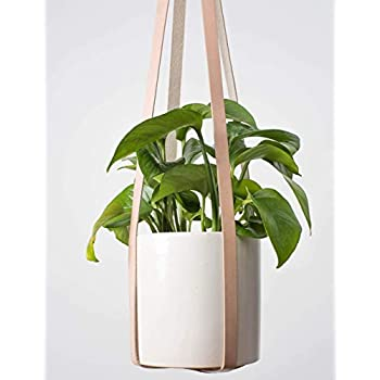 Genuine Leather Plant Hanger by TEAK&TIDES - Modern Hanging Planter for Indoor Plants Cactus and Succulents