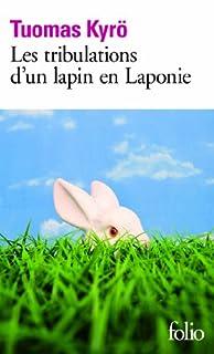 Les tribulations d'un lapin en Laponie