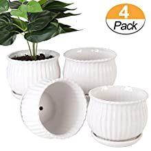 Plant pots - 5.5-inch Cylindrical Ceramic Planters with Connected Saucer, Round Modern Ceramic Garden pots - Succulent Medium-Sized Plant pots Set of 4 (Pure White)