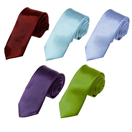 DAN2005 Blue Violet,Lavender,Blue,Medium Orchid,Dark Red 2'' Inch Skinny Tie Five Package Gift Set 5PT SET BY Dan Smith by Dan Smith