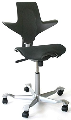 Joe Rogan S Capisco Ergonomic Chair And Alternatives