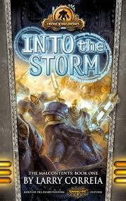 book cover of Into the Storm