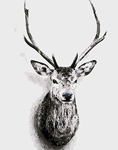 ABEUTY DIY Paint by Numbers for Adults Beginner - Black & White Deer Head 16x20 inches Number Painting Anti Stress Toys (Wooden Framed) (Framed Head Deer)