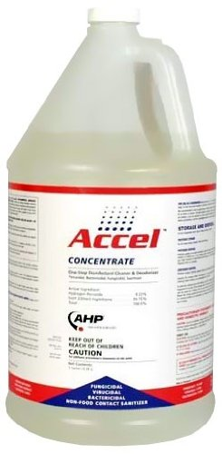 Accel Disinfectant Concentrate Gallon, My Pet Supplies