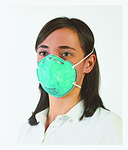 8612f flu mask n95