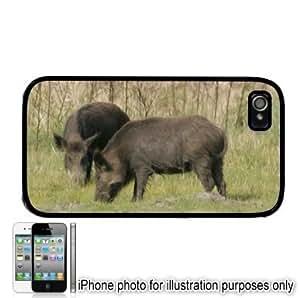 Wild Boar Photo Apple iphone 6 plus 5.5 Case Cover Black