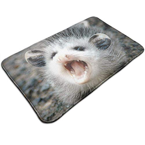 (Tuoneng Baby Possum,Kitchen Carpet Rug Door Mat Rug for Bathroom Outdoor Porch Laundry Living Multifunction Doormat (19.5