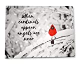 cardinal bird pictures - BANBERRY DESIGNS When Cardinals Appear Angels are Near - Memorial LED Lighted Canvas Print with Red Cardinal in Snowy Winter Scene