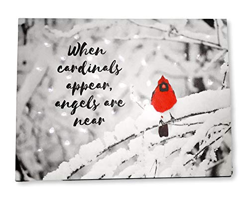 BANBERRY DESIGNS When Cardinals Appear Angels are Near - Memorial LED Lighted Canvas Print with Red Cardinal in Snowy Winter Scene (Statue Fiber Optic Angel)