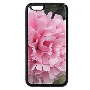 iPhone 6S / iPhone 6 Case (Black) Pretty In Pink