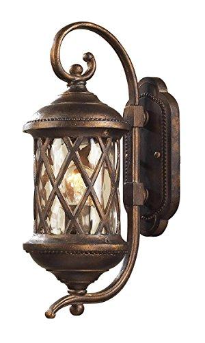 ELK 42030/1, Barrington Gate Cast Aluminum Outdoor Wall Sconce Lighting, Hazelnut Bronze ()