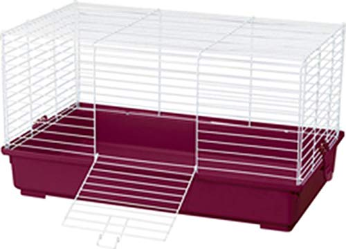 Kaytee Complete Guinea Pig Kit with Large Cage, Food & Bedding