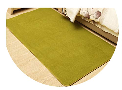 Solid Anti-Slip Area Rug for Living Room Home Decor Coral Velet Rectangle Carpets in The Bedroom Bedside Floor Mats and Rugs,Caolv,50 x 160 cm