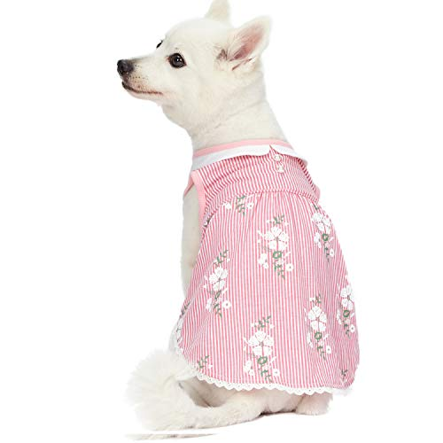 Blueberry Pet 2019 New Wonderland Sleeveless Floral Dog Dress Shirt in Pink Stripe with Peter Pan Collar, Back Length 10