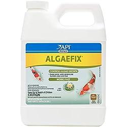 Mars Fishcare North America API Pond Algaefix 32 fl. OZ (946mL)