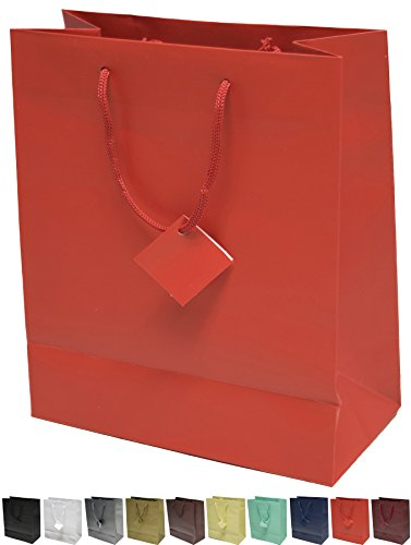Novel Box® Red Matte Laminated Euro Tote Paper Gift Bag Bundle 8'X4'X10' (10 Count) + NB Cleaning Cloth