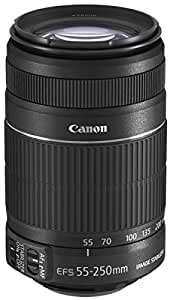 Canon EFS 55-250mm f/4.0-5.6 IS II Telephoto Zoom Lens for Canon Digital SLR Cameras - International Version (No Warranty)