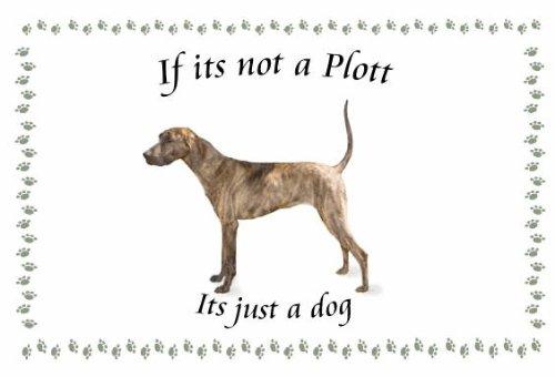 Plott Hound - diseño de Llaveros de perro - Si su no: Amazon ...