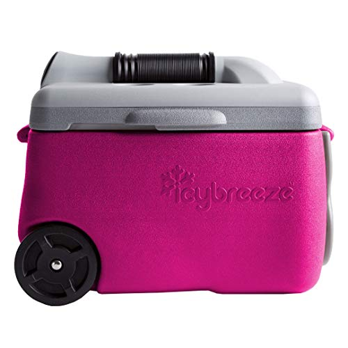 IcyBreeze Cooler Chill Package | No Battery, Direct Power Unit | Ultimate Stationary Package (Pink, 12V Car Charger)