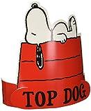 Eureka Peanuts Snoopy Top Dog Wearable Paper Hat, 32 pcs.