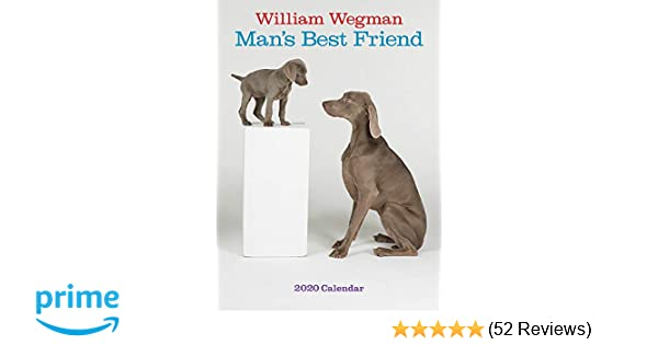 Best Dog Collars 2020 Amazon.com: William Wegman Man's Best Friend 2020 Wall Calendar