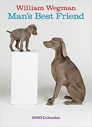 Best Wall Calendars 2020 Amazon.com: William Wegman Man's Best Friend 2020 Wall Calendar