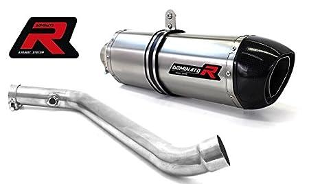 GP I 03 DB KILLER Dominator Exhaust Silencieux /échappement BMW R850R