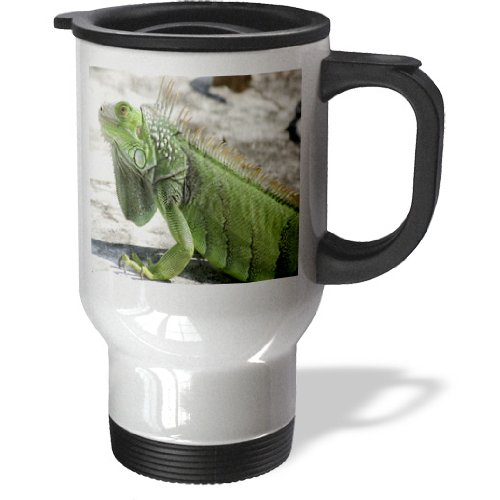 Iguane Travel Mug, 14- Ounce Stainless Steel