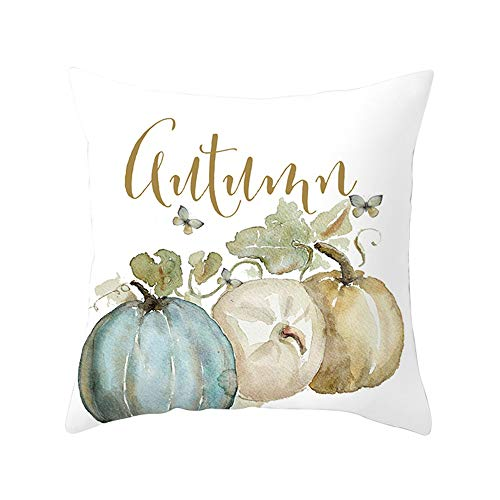 Pumpkin Home Decorative Halloween Throw Pillow Cover Square 18 x 18 Inches Cushion Covers Case for Sofa (C)