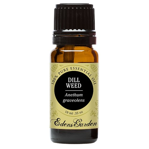 Dip Dill Weed - Dill Weed 100% Pure Therapeutic Grade Essential Oil by Edens Garden- 10 ml