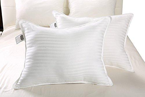 900 fill pillow - 1