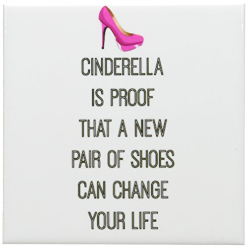 3dRose cst_201976_3 Cinderella is Proof That a New Pair o...