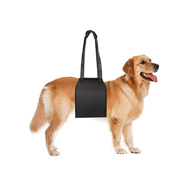 1Pc Breathable Dog Aid Assist Sling Lift Support Rehabilitation Harness for Injuries Mobility with Weak Legs Pet… Click on image for further info. 4