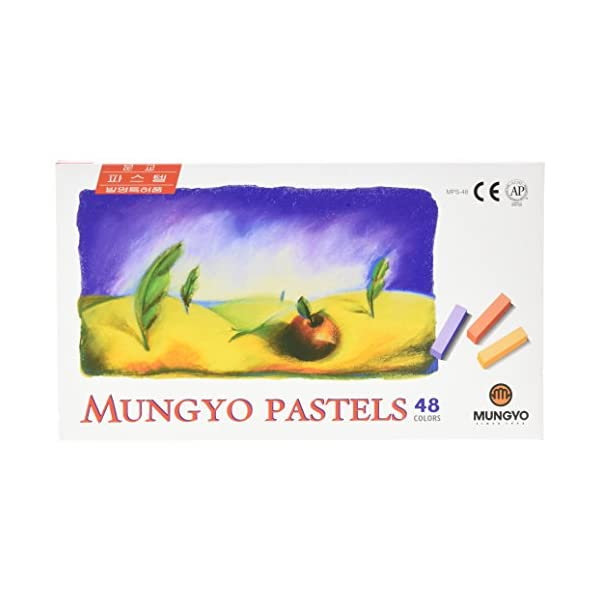 Non-Toxic-Mungyo-Soft-Pastel-Set-of-48-Assorted-Colors-Square-Chalk